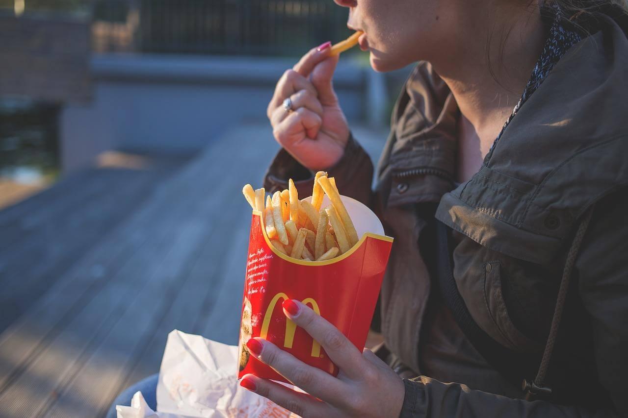 Fettsucht durch fettreiche Nahrung